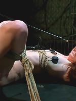 Heavy Electro BDSM Assplay