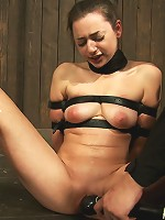 Taught pussies, bound tits, prancing whores