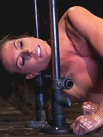 CAUTION: Extreme BDSM and Ass-Fucking with Ariel X