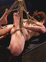 Sophia Lauryn-TestedFirst Timer Experiences Real Bondage and Intense Orgasms!