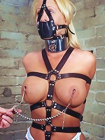 Threesome BDSM Sex