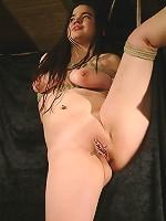 Chubby brunette in bondage suspension
